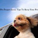 national pet preparedness