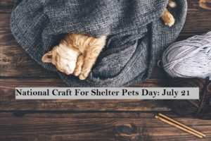 national craft for shelter pets day