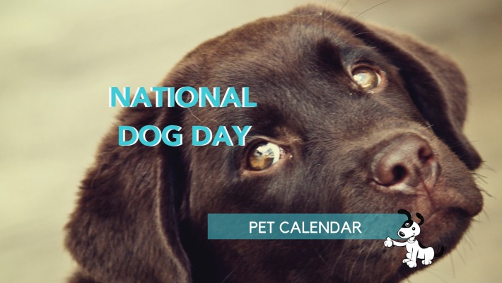 national dog day pet calendar