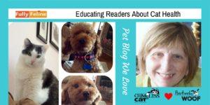 pet blog we love