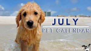 july pet calendar