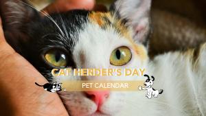 cat herder day