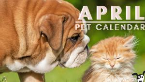 april pet calendar