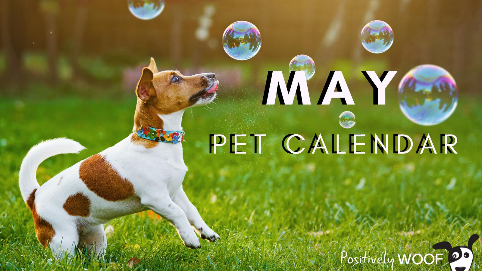 may pet calendar