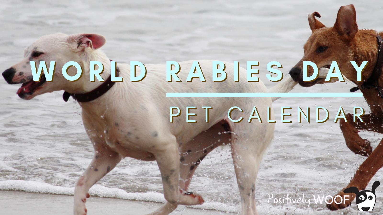 pet calendar world rabies day