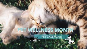 pet wellness month